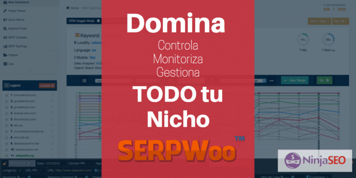 SERPWoo, la solución definitiva para dominar tu Nicho