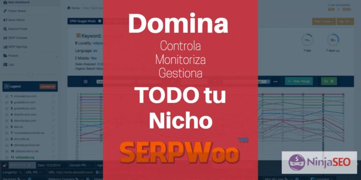 SERPWoo monitoriza tu Nicho