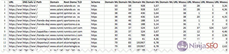 Resultados de Moz con URL Profiler