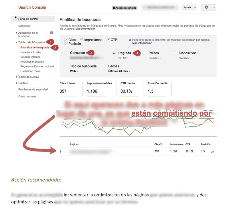 Páginas de una auditoría web